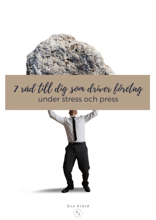 eva svärd 7 råd för dig som driver företag under stress och press
